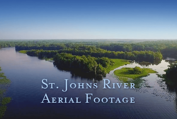 St. Johns River Aerial Footage
